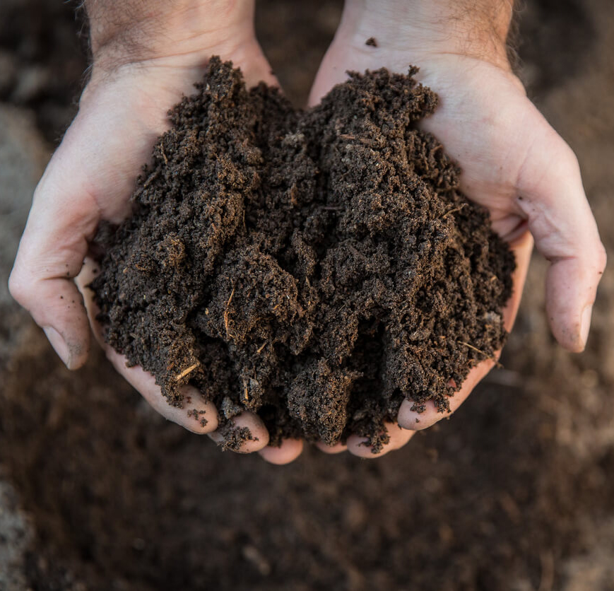 organic soil for vegetables