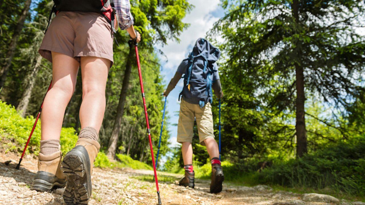 trekking stick